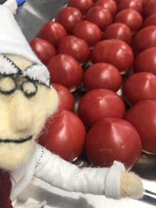 閖上-ラ・ファータのトマト